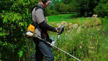 Permalink auf:Grünpflege für private Kunden